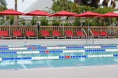 15. Спортивный бассейн
