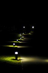 10. Ночью дорожки подсвечиваются