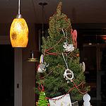 21. Борисина елочка - с другой стороны