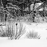 10. Снежные завалы снаружи