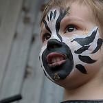101. Бориска-зебра