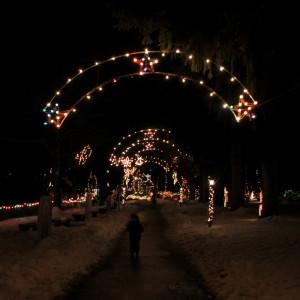 Ходили на Festival of Lights - небольшой парк, у нас рядом, зимой завешивают всякими рождественскими гирляндами.