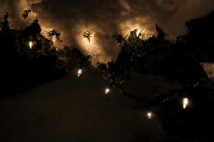Lights при ближайшем рассмотрении